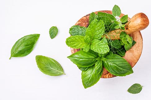 alternative-medicine-fresh-herbs-wooden-mortar-set-up-white-wooden-background.jpg